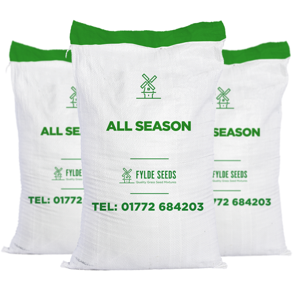 All Season grass seeds